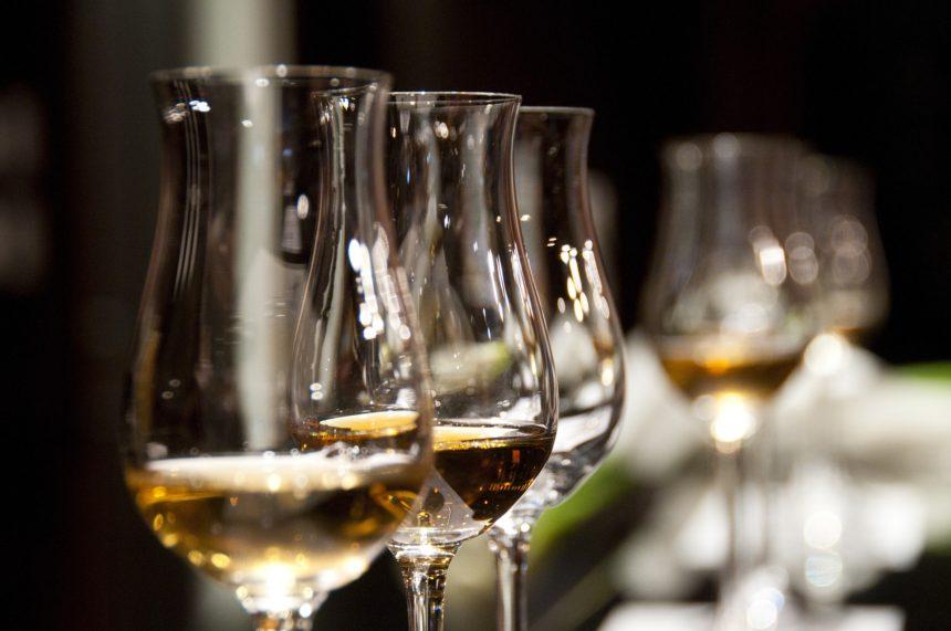 Řízená degustace vín pro skupiny